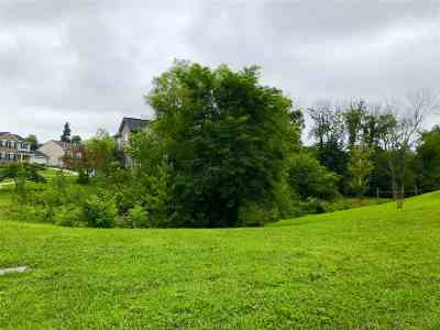 Boone County Residential Lots & Land For Sale: 141 Bedinger