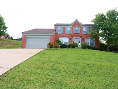 Crescent Springs Single Family Home For Sale: 681 Meadow Wood Drive