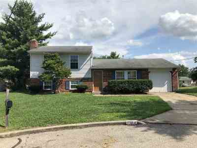 Florence, Erlanger Single Family Home For Sale: 7704 Tollbridge Court