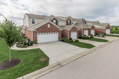 Erlanger Condo/Townhouse For Sale: 913 Waterview Lane