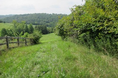 Boone County, Campbell County, Gallatin County, Grant County, Kenton County, Pendleton County Residential Lots & Land For Sale: 12909 Pleasant Ridge Road