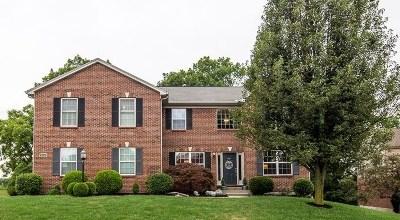 Erlanger Single Family Home For Sale: 3916 Buckhill Drive