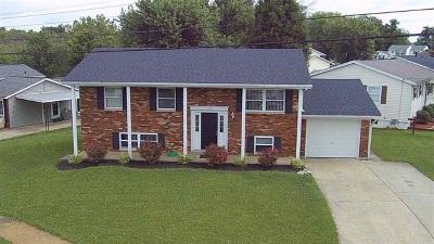 Erlanger Single Family Home For Sale: 3358 Fir Tree Lane