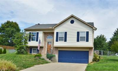 Independence Single Family Home For Sale: 1166 Constitution Drive