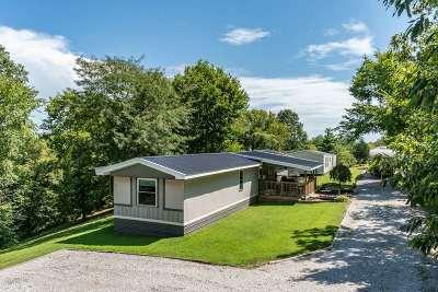 Pendleton County Single Family Home For Sale: 595 Slick Ridge Road