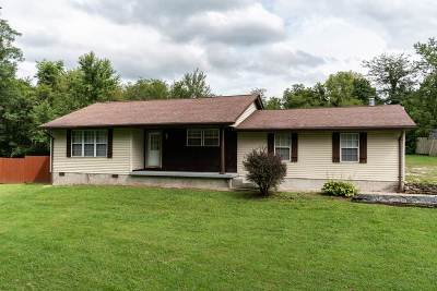 Boone County, Campbell County, Gallatin County, Grant County, Kenton County, Pendleton County Single Family Home For Sale: 14838 Salem Creek Road