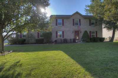 Single Family Home For Sale: 10174 Falcon Ridge Drive