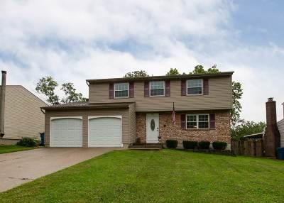 Erlanger Single Family Home New: 3205 Spring Valley Dr
