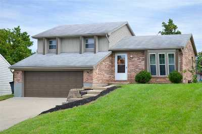 Boone County Single Family Home For Sale: 2 Willowood