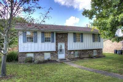 Burlington Single Family Home For Sale: 5907 Carlton Drive