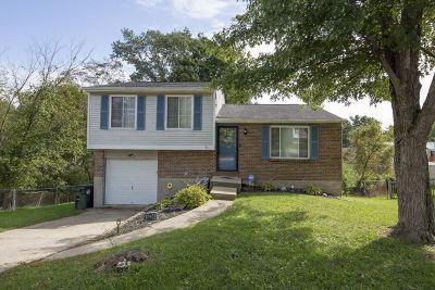 Burlington Single Family Home For Sale: 6234 Johnstone Court