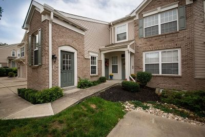 Ludlow Condo/Townhouse For Sale: 385 Southwind Lane