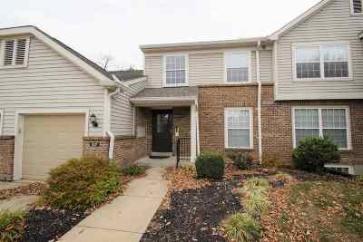 Wilder Condo/Townhouse For Sale: 517 Telescope View #302