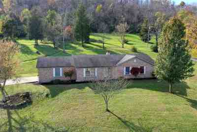 Campbell County Single Family Home For Sale: 4440 Mary Ingles Hwy