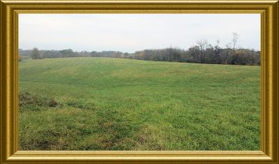 Verona Residential Lots & Land For Sale: 5.30 Ky Hwy 14