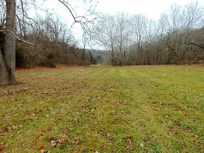 Residential Lots & Land For Sale: Sparta Pike