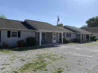 Pendleton County Multi Family Home For Sale: 298 Amber Way