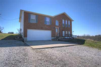 Williamstown Single Family Home New: 180 Hogg Ridge Road