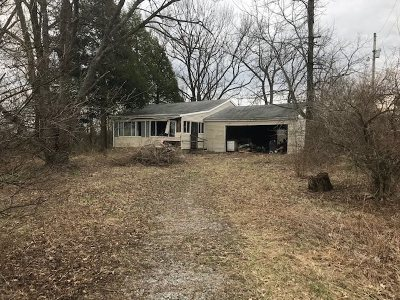 Single Family Home For Sale: 4060 Richardson Road