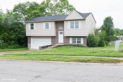 Crittenden Single Family Home For Sale: 180 Waller Drive