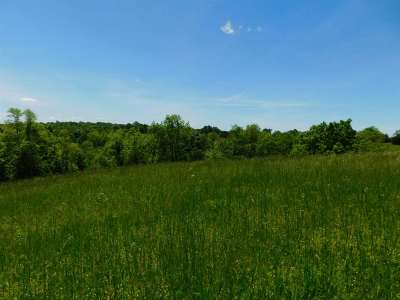 Corinth Residential Lots & Land For Sale: 8ac Hwy 330 Highway
