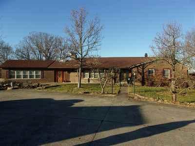 Single Family Home For Sale: 12786 Burns
