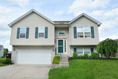 Boone County, Campbell County, Kenton County Single Family Home For Sale: 4022 Crystal Creek Circle