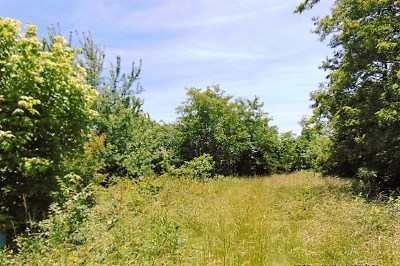 Owenton Residential Lots & Land For Sale: 1525 Highway 22