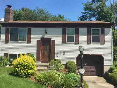 Florence Single Family Home For Sale: 1587 Hickory Hill