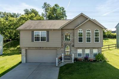Dry Ridge Single Family Home For Sale: 300 Brentwood