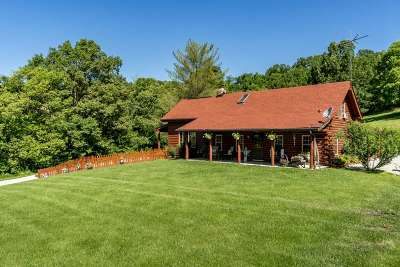 Campbell County Single Family Home For Sale: 1940 California Cross Road