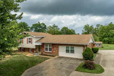 Single Family Home For Sale: 260 Shady Lane