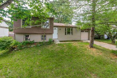 Burlington Single Family Home For Sale: 3101 Featherstone Drive