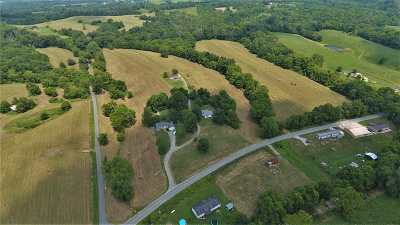 Carroll County Single Family Home For Sale: 6227 Hwy 36 East