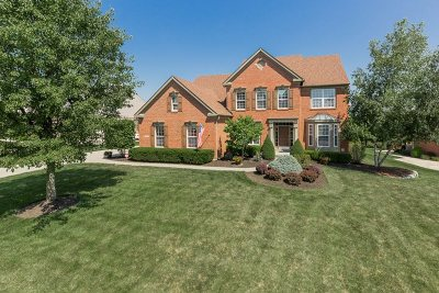 Erlanger Single Family Home For Sale: 882 Ashridge Court
