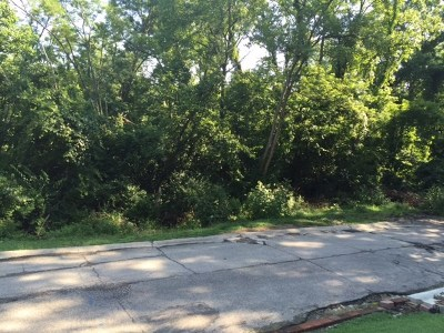 Bellevue Residential Lots & Land For Sale: 22 & 23 Cleveland Avenue