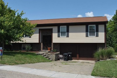 Campbell County Single Family Home For Sale: 7 Timberview Court