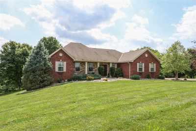 Kenton County Single Family Home For Sale: 15274 Madison Pike