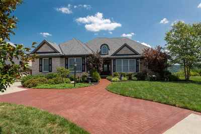 Boone County Single Family Home For Sale: 1735 Grandview Drive