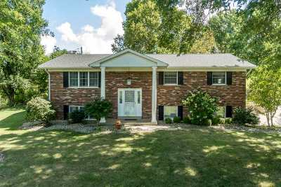 Single Family Home For Sale: 960 Chambers Road