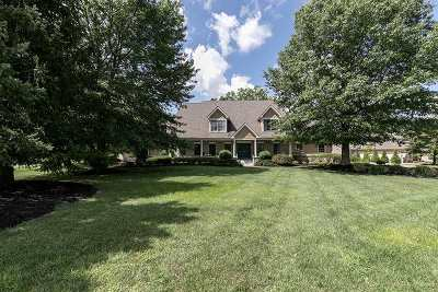 Single Family Home For Sale: 901 Caitlin Drive