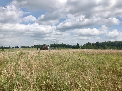 Owensboro Residential Lots & Land For Sale: 1338 Hill Bridge Road
