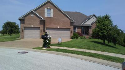 Owensboro Single Family Home For Sale: 6660 Waterford Place