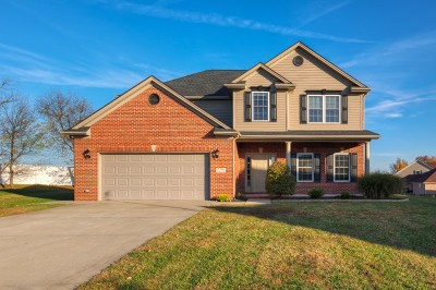 Owensboro Single Family Home For Sale: 2346 Overlook Park