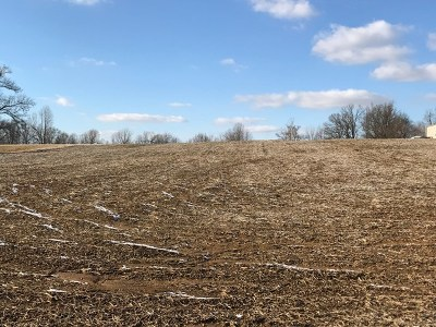 Owensboro Residential Lots & Land For Sale: 8789 State Route 56