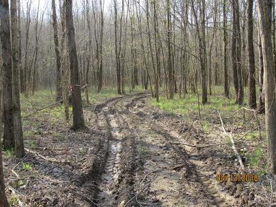 Owensboro Residential Lots & Land For Sale: 7744 Hwy 2830