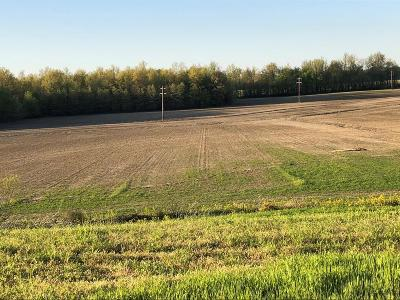 Owensboro Residential Lots & Land For Sale: 8223 Hamilton Ferry Rd