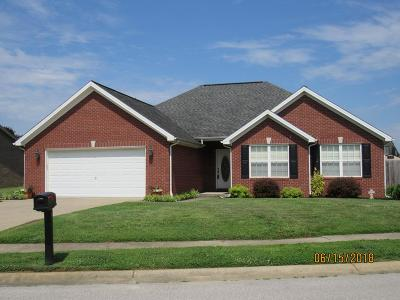 Owensboro Single Family Home For Sale: 4921 Diamond Dr.