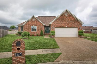 Owensboro Single Family Home For Sale: 402 Newbury Ct
