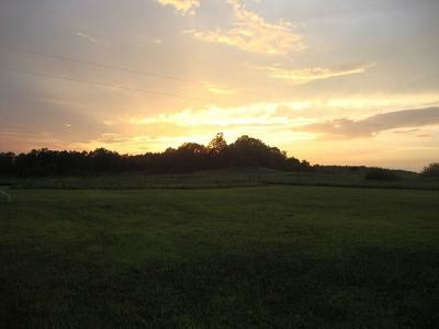 Owensboro Farm For Sale: 9471 Hwy 815